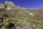 Scaling Mt Kenya
